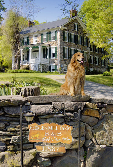 George's Mill B&B