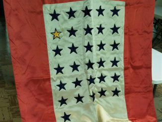 Gold Star NJLC service flag (2)
