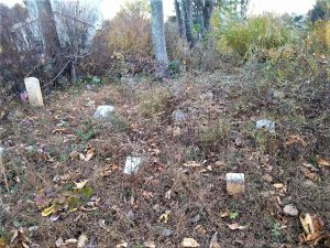 Portion of Mt. Sinai cemetery today. Samuel Timbers military marker is upper far left. Paris family foot stones are center front. Photos by Edward Spannaus.