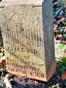 """Alice L.B. Morgan marker, with Gates of Heaven carving. Inscription reads: """"Alice L. B., dau. of James H. and Annie Morgan, died May 19, 1894. Age 11 mo. (?) and 26 d."""""""