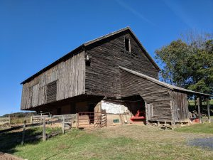 The Ruse barn had sheds build on the side, which might have looked like this. Photo courtesy Shenandoah County Historical Society.
