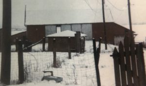 Undated image of the stone and frame bank barn. Original photo from the Reed family to the Lovettsville Historical Society.