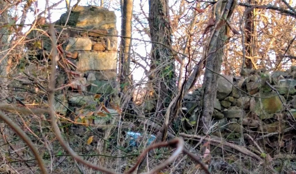An intact stone wall, probably the foundation wall on the west side, amidst the ruins of the Ruse bank barn. Photo  by Edward Spannaus, January 2021.