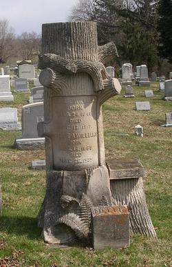 """""""Tree trunk"""" monument for Charles T. Williams and his wife Sallie Ann Seitz."""